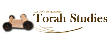 Torah_teaching